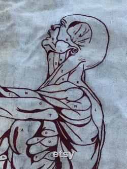 Vintage Apron with Male Muscular System Anatomy Study Art